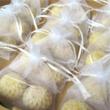 Körömvirágos szappanvirág duó